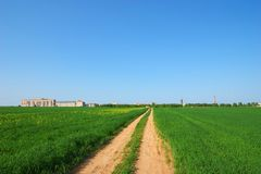 Road through green field. Photo of the road through green field Royalty Free Stock Images