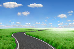 Road and green field. 3d Landscape Stock Photography