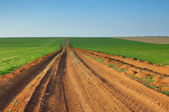Road through the green field Royalty Free Stock Photography