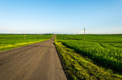 The road on a green field Royalty Free Stock Images