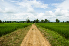 Road in green field and clouds Royalty Free Stock Photos