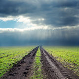 Road in green field to low clouds Royalty Free Stock Photography