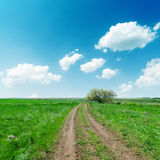 Road in green fields and blue sky with clouds Royalty Free Stock Photo