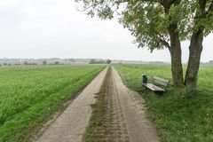 Road between green fields from one village to another stock photos