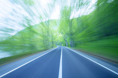 Road in a green forest Royalty Free Stock Photo