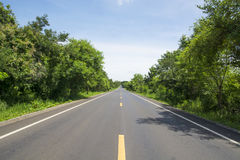 Road and green forest at mountain Royalty Free Stock Photo