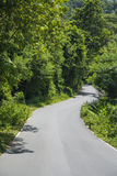 Road and green forest at mountain Stock Image