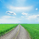 Road in green grass field to horizon under blue sky. With clouds Royalty Free Stock Photography