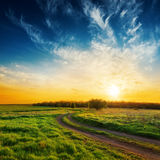 Road in green grass and sunset in dramatic sky Royalty Free Stock Image