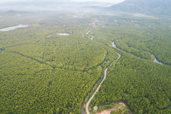 Road in the green mangrove forest at Phang-Nga bay southern of T. Top view road in the green mangrove forest at Phang-Nga bay southern of Thailand. Aerial view Stock Photography
