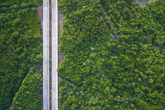 Road in the green mangrove forest in Phuket, Thailand. Aerial vi. Top view road in the green mangrove forest in Phuket, Thailand. Aerial view from flying drone Royalty Free Stock Images