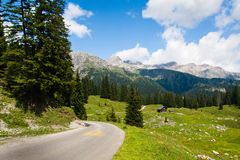 Road and green meadows. In valley. Austrian Alps royalty free stock photos