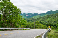 Road green mountain curve natural Stock Photos