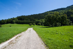 Road through green pasture Royalty Free Stock Photography