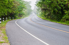 Road and green trees Stock Photography