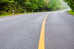 Road and green trees Royalty Free Stock Photography