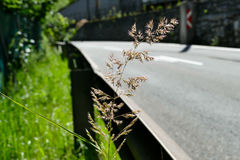 Road with guardrail. Street with guardrail in austria Stock Photography
