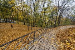 Road with handrails in an autumn park. Road with handrails and fallen leaves in an autumn park Royalty Free Stock Images