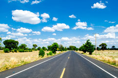 Road and harvest Royalty Free Stock Images