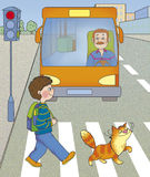 Road hazard. A boy and a cat cross the road at a green light Stock Image