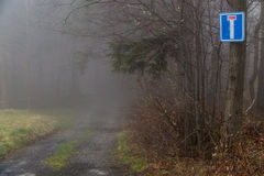 Road in the haze royalty free stock photo