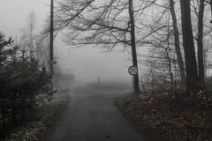 Road in the haze Stock Photography