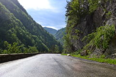 Road in the heart of the mountains Stock Photos