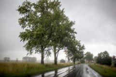 Road in heavy rain Stock Image