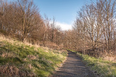 Road on a Hill. With Bright Sky and Tree Royalty Free Stock Photography