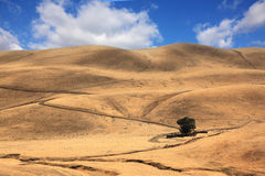 The road among hills of California Stock Photos