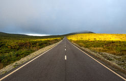 Road among hills with clouds and sun (Azores) Stock Photography