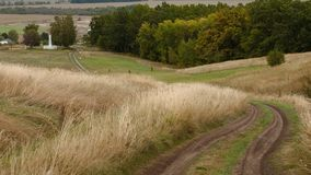 Road through the hills in countryside. Road goes down and forward through the hills and fields of grass on the margin of the forest royalty free stock photography