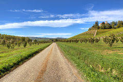 Road through the hills and fields. Royalty Free Stock Image