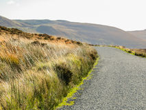 The road in the hills of Ireland. Sally Gap or Military Road. The road in the hills of Ireland. County Wicklow, Wicklow Mountains National Park, Ireland Stock Photography