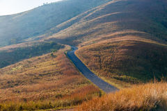 Road Hillside African Bush Color Royalty Free Stock Photo