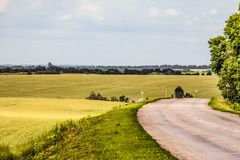 Road among hilly green fields. Turning the old rural asphalt road. stock photo