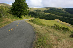 Road in hilly landscape Stock Image