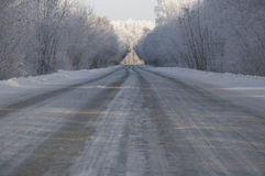 Road and hoar-frost in winter Stock Image