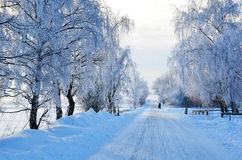 Road with hoarfrost Stock Images