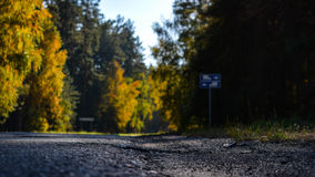 Road home. Autumn road and trees background Royalty Free Stock Photography