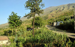 Road by Homes in route to Ribeira Filipe Stock Photo