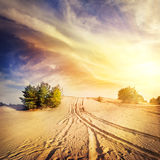 Road in the hot desert sand Stock Photos