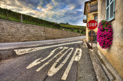 Road among house and vineyards. Piedmont, Italy. Stop sign on the narrow road among old house and vineyards under cloudy sky in Piedmont, Northern Italy Royalty Free Stock Photos