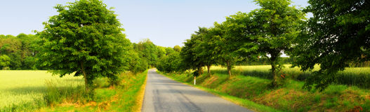 Road i the countryside Stock Photography