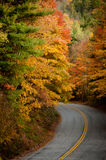 Road In Fall Royalty Free Stock Photos