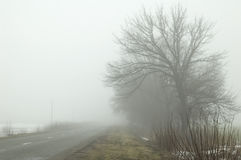 Road In Fog Royalty Free Stock Photos
