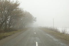Road In Fog Royalty Free Stock Images