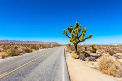 Free Road In Joshua Tree National Park Stock Photos - 92397443