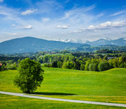 Free Road In Pastoral Countryside Royalty Free Stock Photo - 40466845