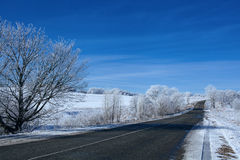 Road In Snow Forest Stock Photos
